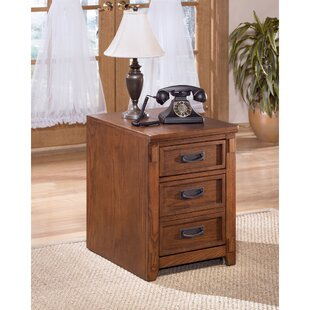 Isaak 2 Drawer Chest by Mistana