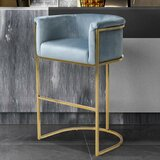 Angulo Bar & Counter Stool by Everly Quinn