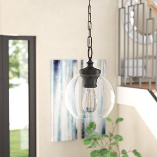 Mercury Row Asellus 1-Light Globe Pendant