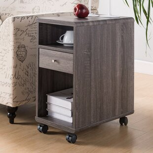 Wallach Spacious End Table with Storage