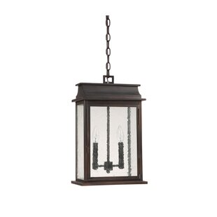 Nikhil 2-Light Outdoor Hanging Lantern