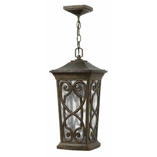 Hinkley Lighting Enzo 1-Light Outdoor Hanging Lantern