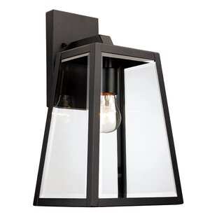 Darby Home Co Wyndham 1-Light Outdoor Wall Lantern