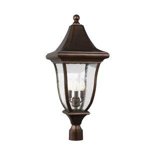 Haubstadt 3-Light Lantern Head by Darby Home Co