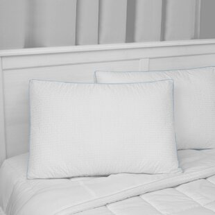 Soft Down Alternative Pillow (Set of 2)