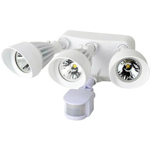 LED Spot Light with Motion Sensor by Morris Products