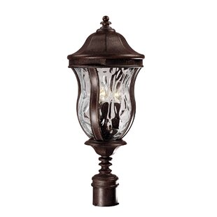 Great Price Coutu 3-Light Lantern Head By Darby Home Co