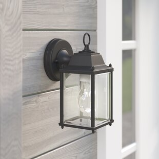 Darby Home Co Lori 1-Light Outdoor Wall Lantern