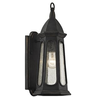 Darby Home Co Desi Outdoor Sconce