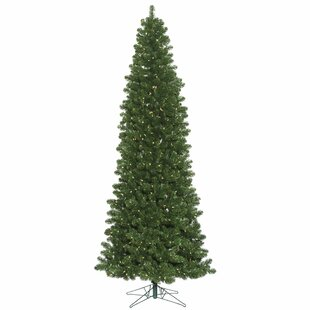2 Fir Artificial Christmas Tree With 50 Warm White LED Lights