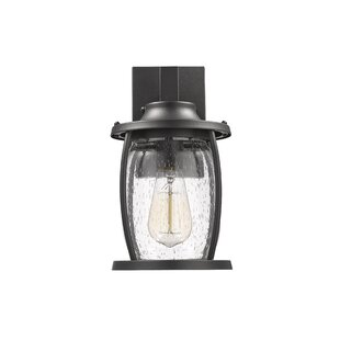 Where buy  Dunnam Transitional Outdoor Wall Lantern By Breakwater Bay
