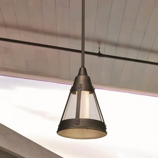 Humphries 1-Light Outdoor Pendant