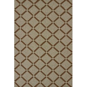 Atrium Handmade Brown Indoor/Outdoor Area Rug