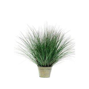 Artificial Wild Grass In Pot Image
