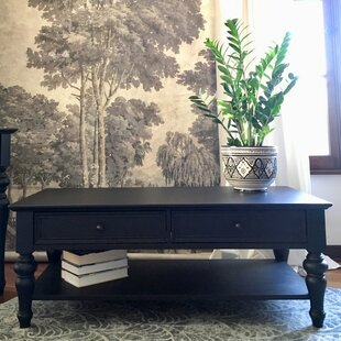 Arroyo Coffee Table with Storage by Alcott Hill