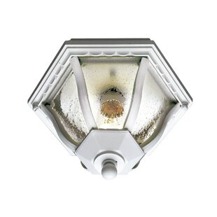 Inexpensive Outdoor Flush Mount By TransGlobe Lighting