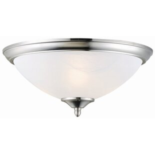Charlton Home Everette 2-Light Flush Mount