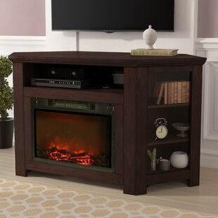 Compare & Buy Cesar TV Stand for TVs up to 50 with Fireplace by Red Barrel Studio Reviews (2019) & Buyer's Guide