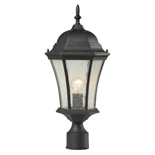 Regner 1-Light Lantern Head By Darby Home Co Outdoor Lighting