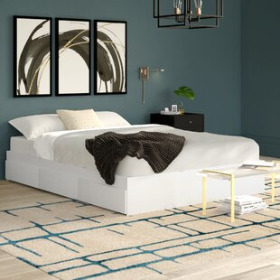 Massie Storage Platform Bed by Mercury Row