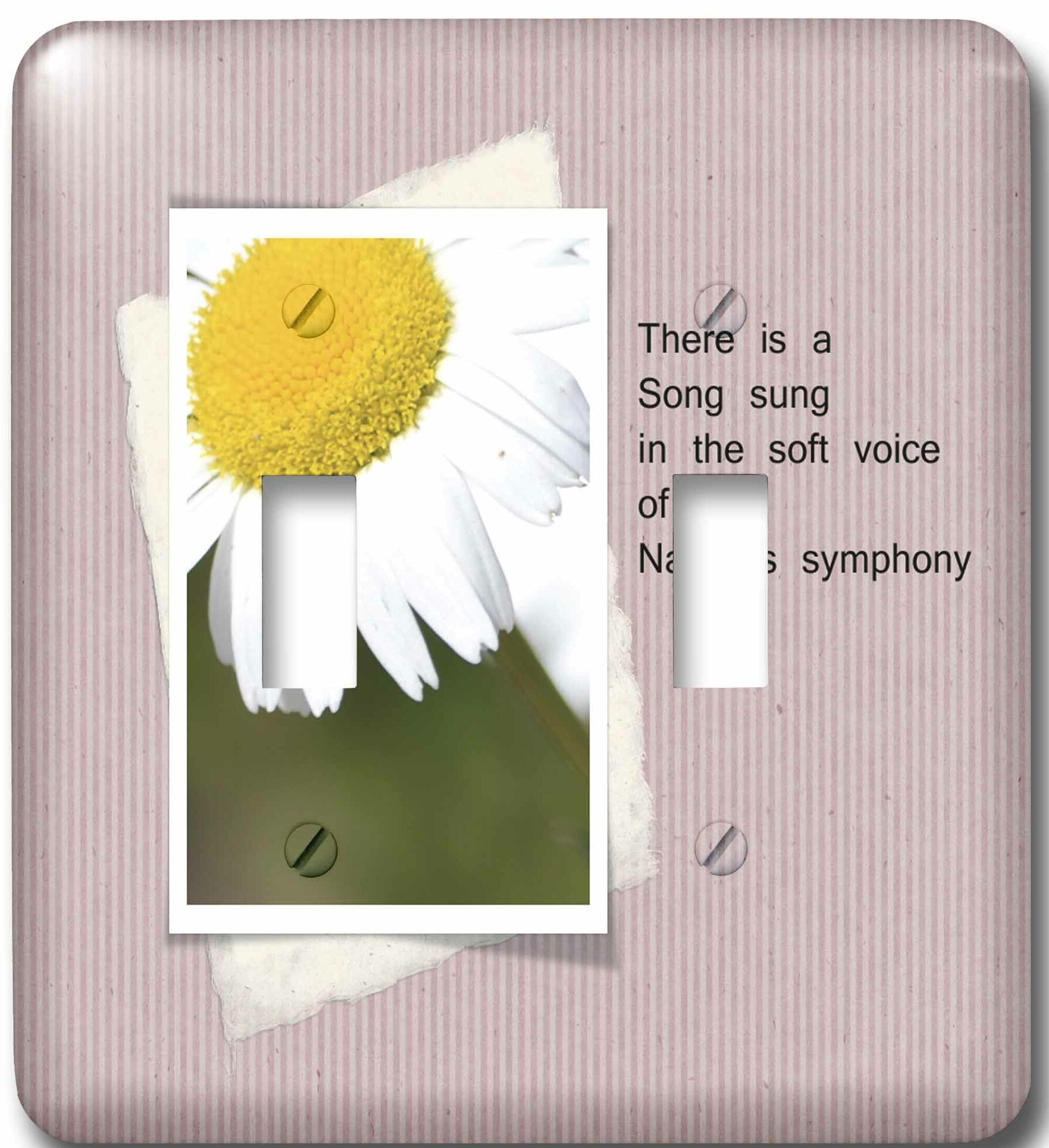3drose Natures Symphony Poetic Daisy Flower 2 Gang Toggle Light Switch Wall Plate Wayfair