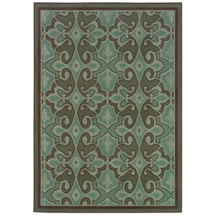 Ceasar Aqua Blue/Brown Indoor/Outdoor Area Rug