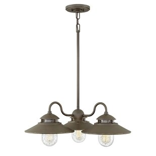 Hellebore 3-Light Outdoor Chandelier
