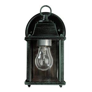 Catanzaro 1-Light Outdoor Wall Lantern