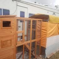 Esquina Outdoor Enclosure Ramp and Main Cat Cage