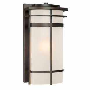 Akilah 1-Light Outdoor Sconce in Bronze