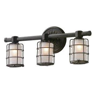 Williston Forge Demarest 3-Light Vanity Light