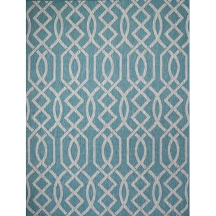 Shuman Turquoise Indoor/Outdoor Area Rug