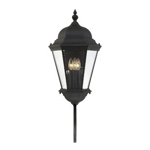 Reviews Randel 3-Light Outdoor Sconce By Charlton Home