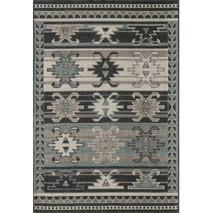 Axel Sage/Gray Indoor/Outdoor Area Rug