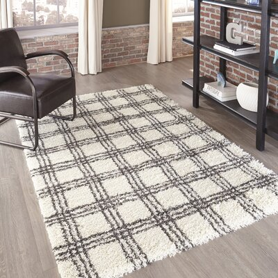 Thick Pile Area Rugs Joss Amp Main