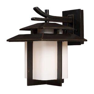 Brayden Studio Baily 1-Light Outdoor Wall Lantern