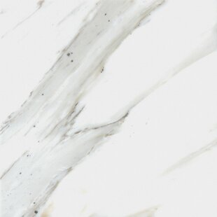 Calacatta 12 inch  x 12 inch  Natural Stone Field Tile in White