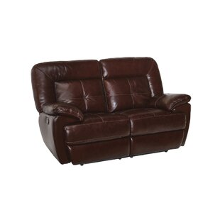 Doegolia Leather Power Reclining Loveseat
