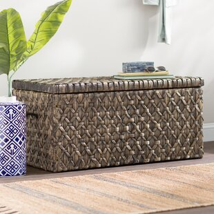 Silvers Hyacinth Storage Trunk Bay Isle Home