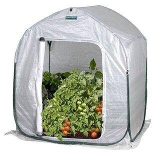 3 Ft. W x 3 Ft. D Mini Greenhouse  sc 1 st  Wayfair & Portable u0026 Small Greenhouses Youu0027ll Love | Wayfair