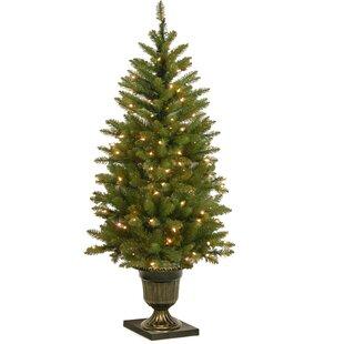 4 artificial christmas tree urn 4 green fir artificial christmas tree with 70 clear lights trees joss main