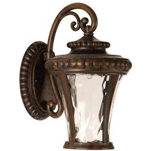 Affordable Essie Outdoor Wall Lantern By Fleur De Lis Living