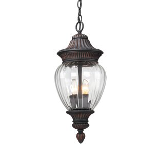 Balfor 2 Light Hanging Lantern By Williston Forge