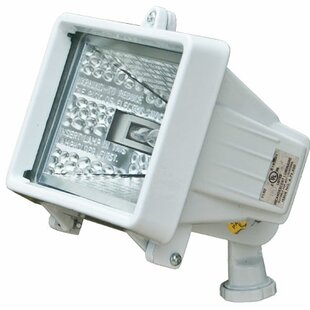 Check Prices 1-Light Flood Light By Dabmar Lighting