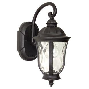 Charlton Home Oakhill 1-Light Glass Shade Outdoor Wall Lantern