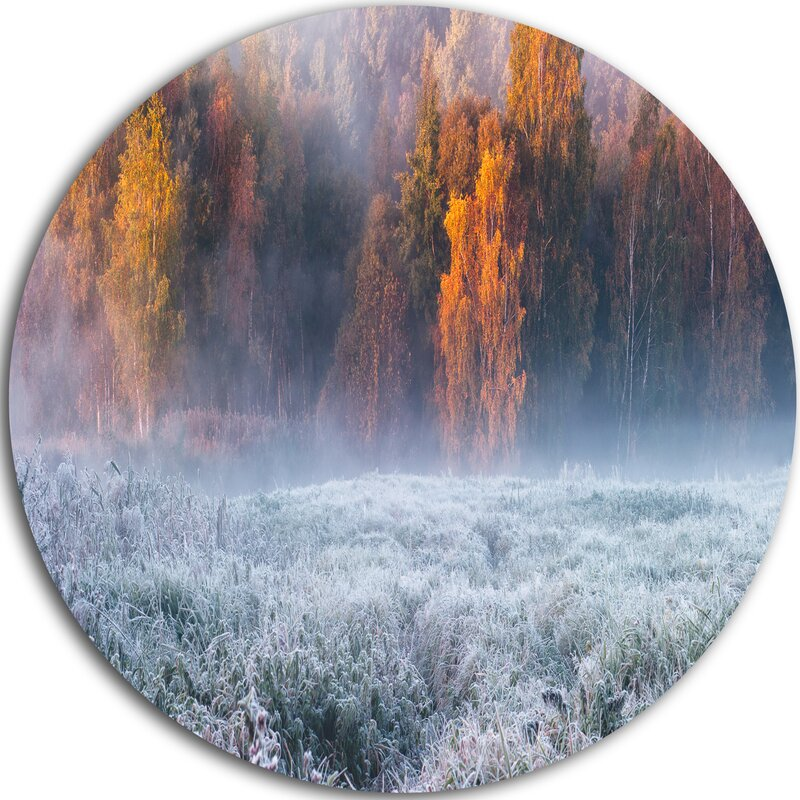 Designart Grey Hoarfrost Design By Winter Photographic Print On Metal Wayfair