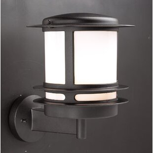Reviews Halstad 1-Light Outdoor Sconce By Breakwater Bay