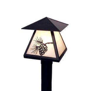 Millwood Pines Parrott 1-Light 13