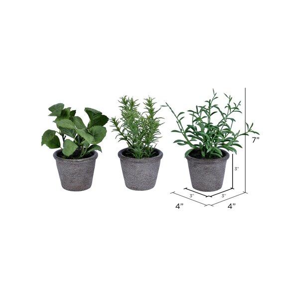 Gracie Oaks 3 Piece Artificial Herbs Plant In Pot Set Reviews Wayfair