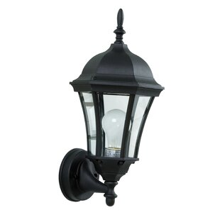 Oswego 1-Light Outdoor Sconce By Charlton Home Outdoor Lighting